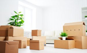 movers-in-miami-florida