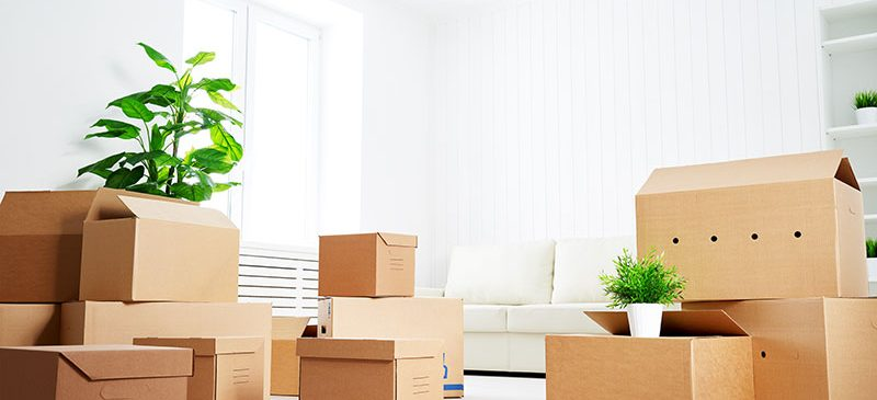 MOVERS IN MIAMI FLORIDA