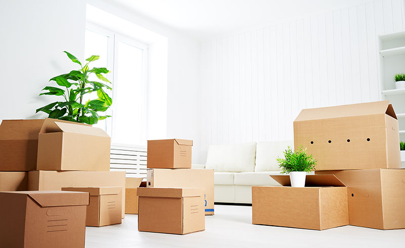 Image result for Movers in Florida